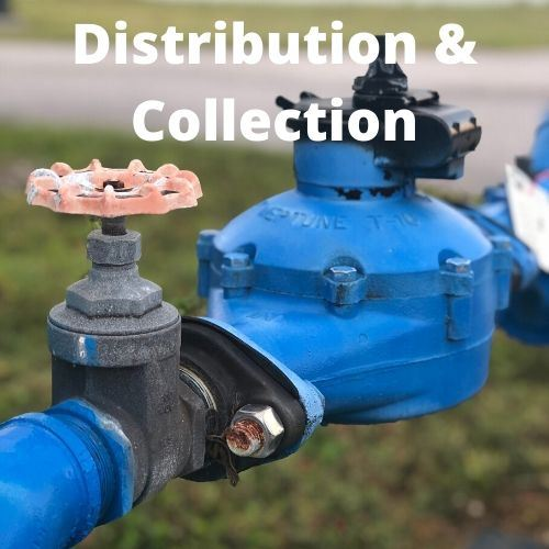 Distribution & Collection link