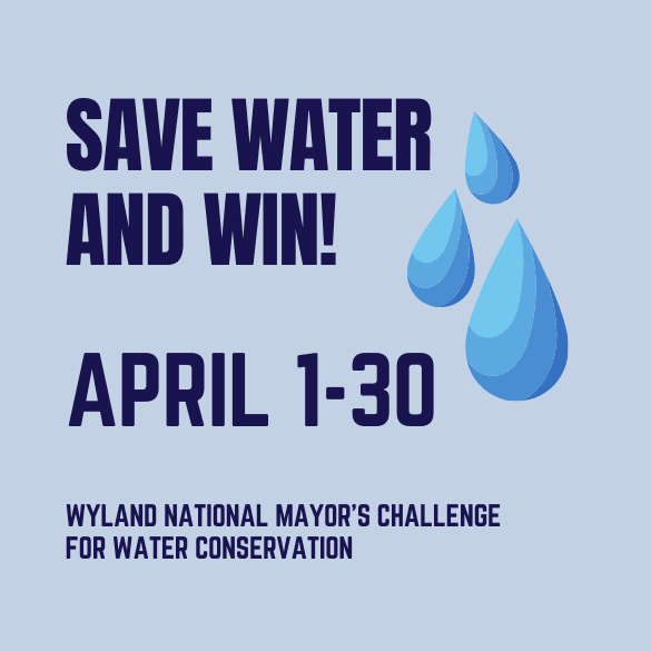 Mayor Water Challenge