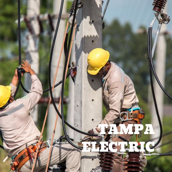 Tampa Electric Image