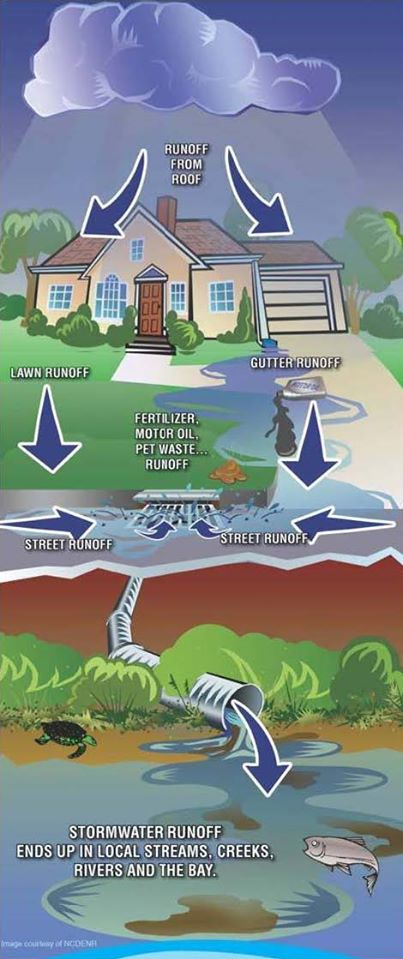Illustration of how stormwater runoff leads to our waterways